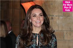 凯特王妃被曝怀胎三月 英国王室又要添丁?