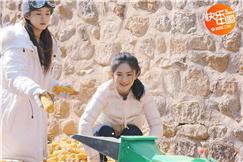 《向往》谢娜赵丽颖同穿姐妹衫 蘑菇屋重聚神默契