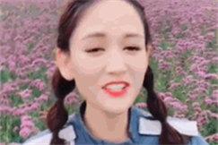 陈乔恩置身紫色花海如梦似幻 扎双辫笑容清甜可爱