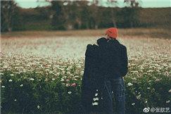 张歆艺靠袁弘肩膀秀恩爱 两人置身花海温馨又浪漫